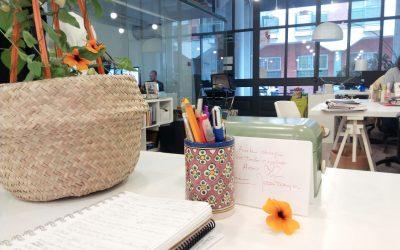El Feng Shui en tu espacio de trabajo